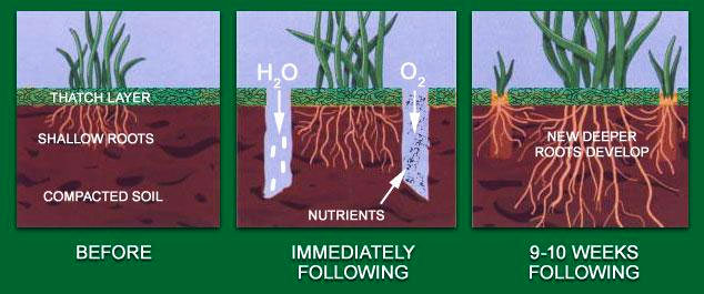 Spring Fall Core Aeration In Stillwater Mn And Hudson Wi